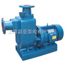 无联轴器自吸排污水泵