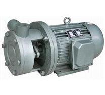 W型直连式旋涡泵