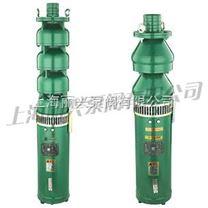 QS系列充水式潜水电泵