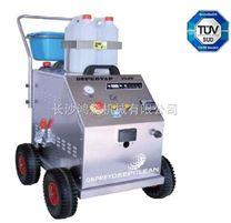 电热型饱和蒸汽清洗机