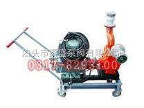 YPB移动式滑片泵