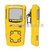 供应BW可燃气体检测仪,气体检测仪