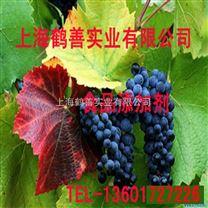 食品级特优级冰醋酸、生产厂家冰醋酸