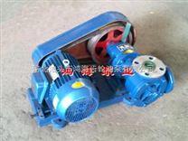 鸿海新型节能转子泵 适用性广