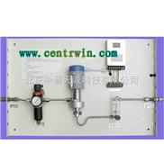 在线露点仪(含采样系统) 型号:BFM/DMT-242