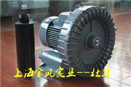 YX-81D2(5,.5KW)全风温泉设备风机