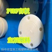 PVDFY型过滤器