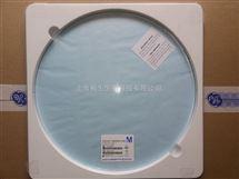 进口293mm直径过滤膜0.45um孔径Millipore PVDF膜HVLP2932A