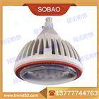 BZD118-30/40/60防爆免维护低碳LED照明灯/80/100w