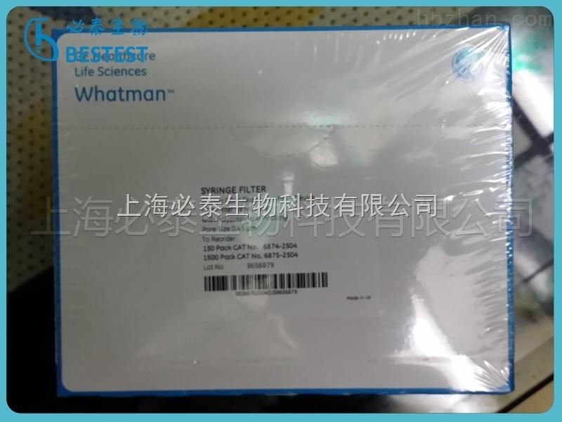 GE Whatman GD/X多层针头式滤器(聚四氟乙烯)