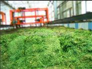园林绿化废弃物堆肥处理