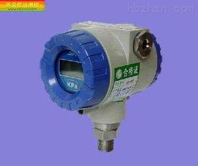 蜗壳进口压力测量XPT133压力变送器接线端子