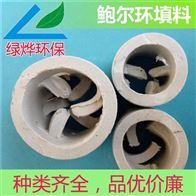 化工陶瓷鲍尔环