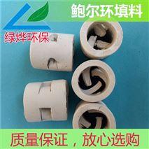 陶瓷鲍尔环填料工作原理及实际应用